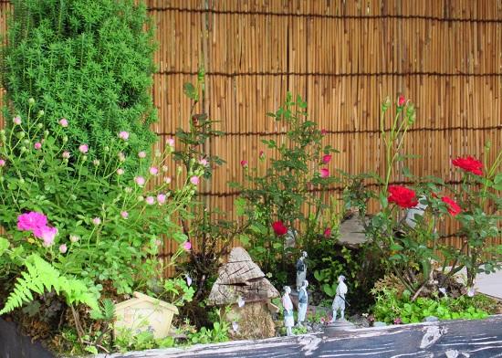 神代植物園2.jpg