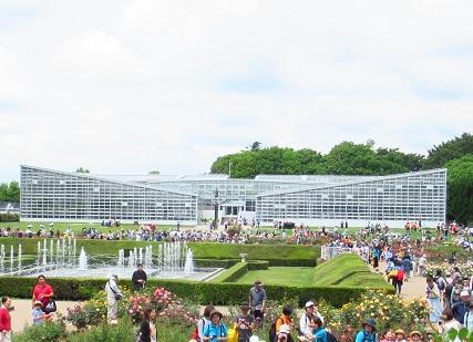 神代植物園:温室.jpg